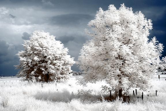 Weisse Landschaft Infrarot