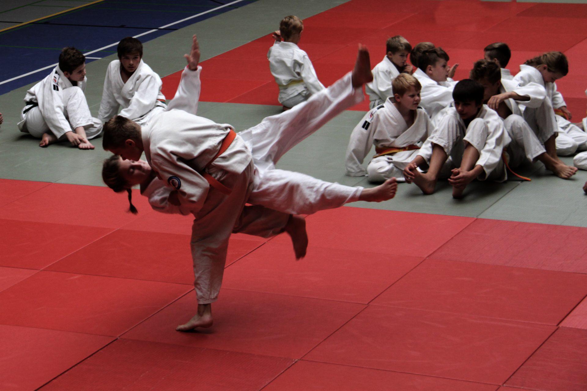 Bernd Krause Judo